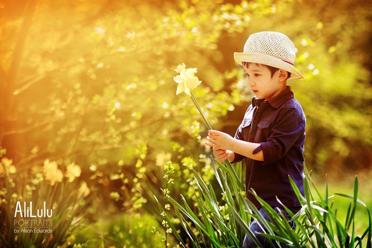 boy holding daffodil in Nottingham